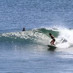 Daily Surf Trips