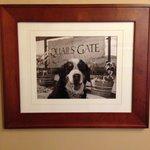 Beware the Quail's Gate Guard Dog