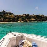 Tintamarre snorkeling