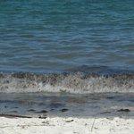 Strand bei Flut