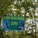 bird watching zone
