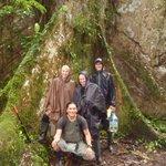 Jungle Tours every days!