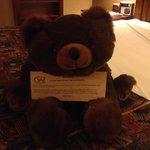 Teddy Bear in each room