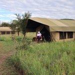 Osupuko Serengeti tented camp