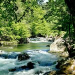 Check out the rivers and streams