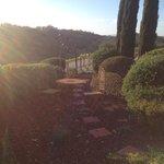 Front garden area overlooking the vineyards