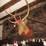 Not Rudolf...