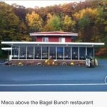 The Bagel Bunch and Last Meca BnB