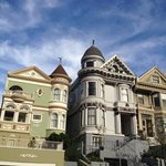 Painted Ladies Along Steiner