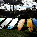 Rio surf n stay!