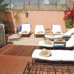 Roof Terrace - Sun Beds