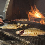 Fresh Fish Grilled Daily