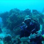 Cozumel Drift Dive - OUTSTANDING!!