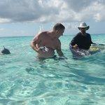 David Luster feeding the stingray