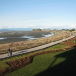 view of Parksville beach from our balcony