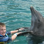 """Shaking hands with """"Chuck"""" the dolphin"""