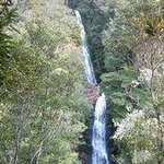 Wentworth Valley Falls - a stunning hour's walk only 5km from town