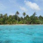 Lagoon - motu (small islet on reef)