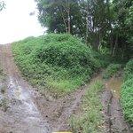 Which way? A muddy road upwards!