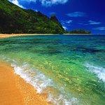Pacific Coast beaches.