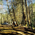 Another view of our campsite.
