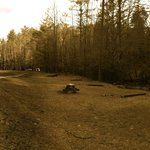 Wide view of the adult campsite.