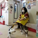The owner playing with her babies 2.