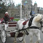 horse drawn carriage in front of the BC Legislature Buildings
