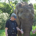 Elephant Sanctuary, The Crags, Plettenberg Bay