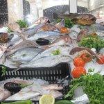 Bala Fish Restaurant