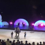 Elephant Show before the show