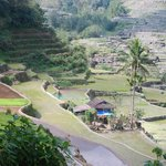 View on a walking tour of the Hapao Rice Terraces