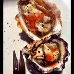 Oysters at The Bungalow