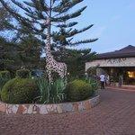 Bougainvillea Safari Lodge ingresso