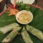 delicious and fresh  veg spring rolls