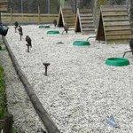 Falkenplätze