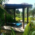 The pool sunbeds