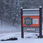 Come Ski, we've got lots of snow