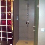 view of shower with violet glass