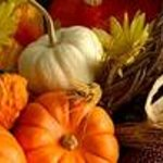 Beautiful Vermont Harvest