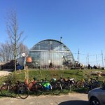 an enormous greenhouse?