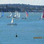 Sailing races every afternoon