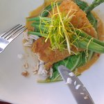 macademia crusted catch of the day