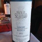 Paolo Scavino Langhe Bianco!