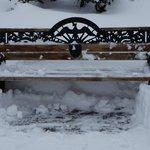 A frozen bench.
