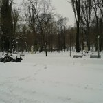 The park during winter.