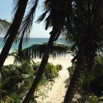 La spiaggia vista dall'albergo