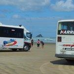 Coaches on 90 mile beach