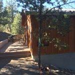 Lindauer Cabin back patio