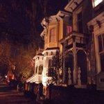 Savannah à noite